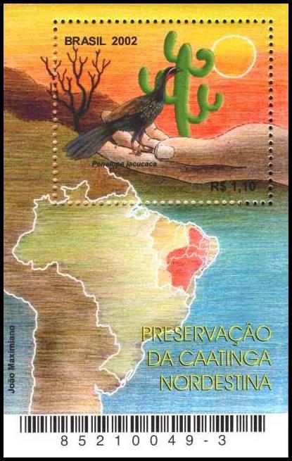 Resultado de imagem para SELO DA CAATINGA